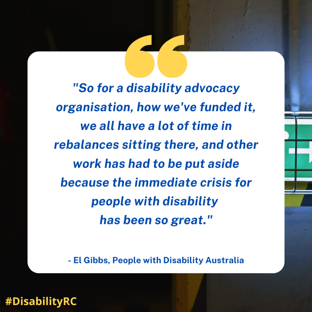 """So for a disability advocacy organisation, how we've funded it, we all have a lot of time in rebalances sitting there, and other work has had to be put aside because the immediate crisis for people with disability has been so great."" - El Gibbs, People with Disability Australia"